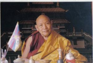 Trulshik Rinpoche (328)